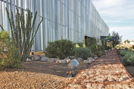 agave library 1