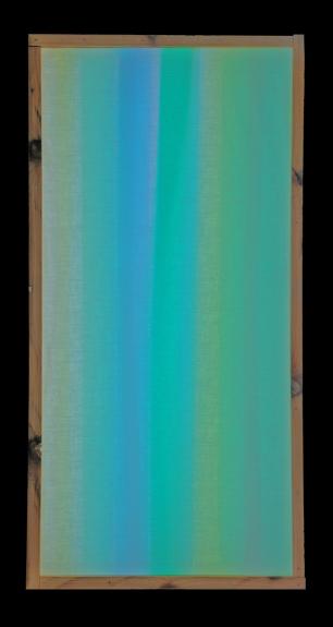 Michael_Anthony - 4 fabric alternate