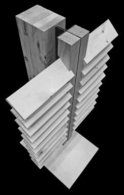 ARCH750F17 Schwartz_Final Construction_Matt Dickman 3b
